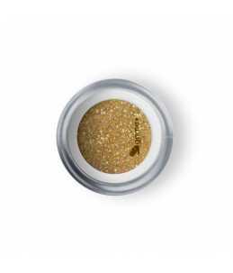 Polvere Acrilica Oro Glitter