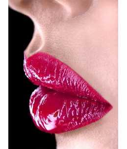 Artistic lip color Freise - tonalità 23