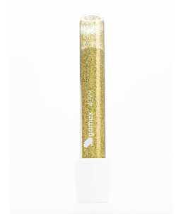 Polvere Glitter Unghie oro