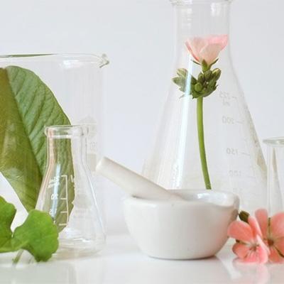 Ingredienti Cosmetici Vegan